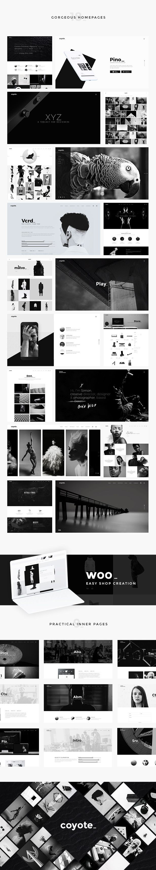 WordPress theme Coyote - A Refined, Powerful Multipurpose Theme (Creative)